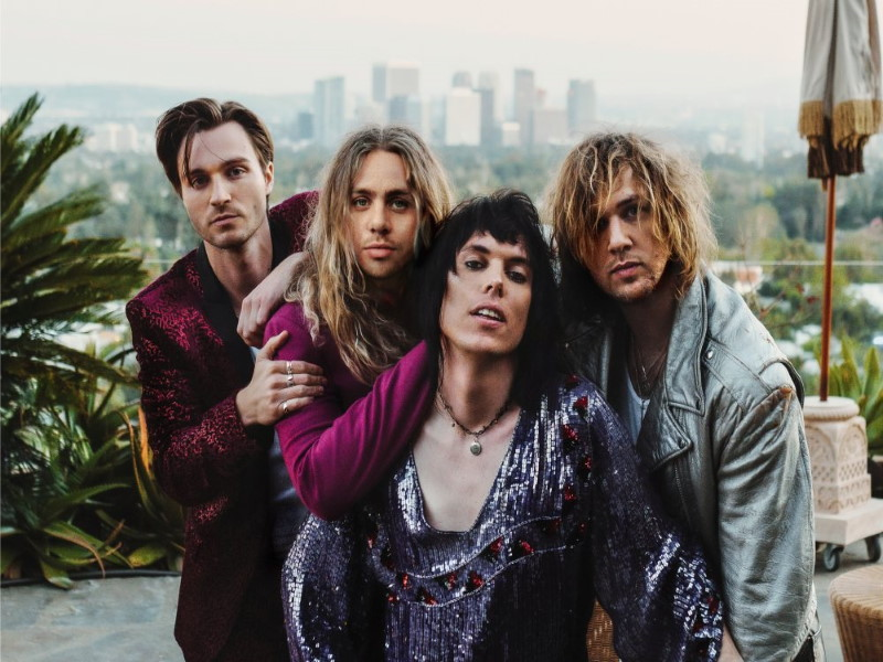 [The Struts Band Picture]