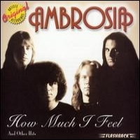 [Ambrosia How Much I Feel And Other Hits Album Cover]