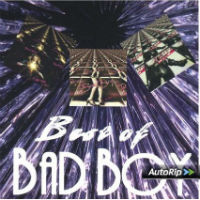 [Bad Boy Best Of Album Cover]