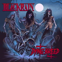 [Blackrain Dying Breed  Album Cover]