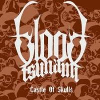 [Blood Tsunami Castle of Skulls Album Cover]