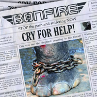 [Bonfire Cry 4 Help  Album Cover]