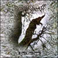 [Borknagar The Olden Domain Album Cover]