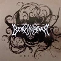 [Borknagar Origin Album Cover]