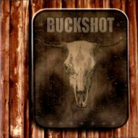 [Buckshot Damn Straight Album Cover]