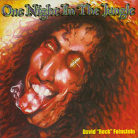[David Rock Feinstein One Night In The Jungle Album Cover]