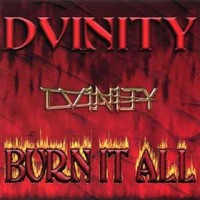 [Dvinity Burn It All Album Cover]