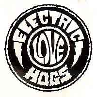 [Electric Love Hogs Electric Love Hogs Album Cover]