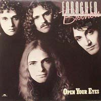 Faragher Brothers Open Your Eyes Album Cover