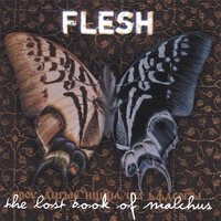 [Flesh The Lost Book Of Malchus Album Cover]