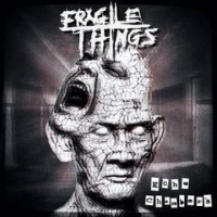 [Fragile Things Echo Chambers Album Cover]