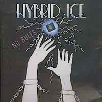 [Hybrid Ice No Rules Album Cover]