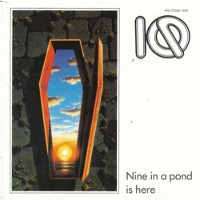 [IQ Nine On A Pond Is Here Album Cover]