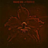 [Machine Head The Burning Red Album Cover]