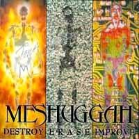 [Meshuggah Destroy Erase Improve Album Cover]