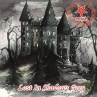 [Morgul Lost In The Shadows Grey Album Cover]