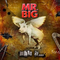 [Mr. Big What If Album Cover]