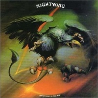 [Nightwing Something in the Air Album Cover]