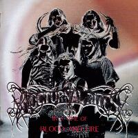 [Nocturnal Rites In A Time Of Blood And Fire Album Cover]