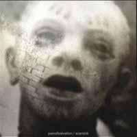 [Pain of Salvation Scarsick Album Cover]