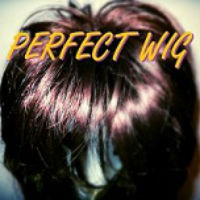 Perfect Wig Perfect Wig Album Cover