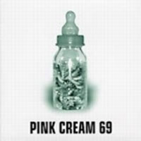 Pink Cream 69 Food for Thought Album Cover