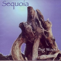 Sequoia Big Wood Album Cover
