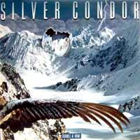 Silver Condor Trouble At Home  Album Cover