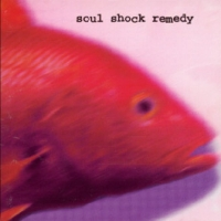 [Soul Shock Remedy Fisheye Lens Album Cover]