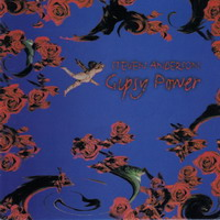 [Steven Anderson Gipsy Power Album Cover]