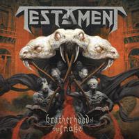 [Testament Brotherhood Of The Snake Album Cover]