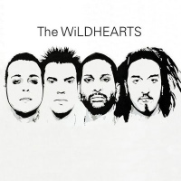 [The Wildhearts The Wildhearts Album Cover]