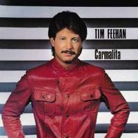 [Tim Feehan Carmalita Album Cover]