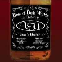 [Tributes Best of Both Worlds: A Tribute to Van Halen Album Cover]