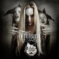 [Trillium Alloy Album Cover]