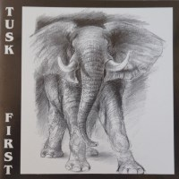 [Tusk First Album Cover]