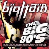 [Compilations Vh1 the Big 80's - Big Hair Album Cover]