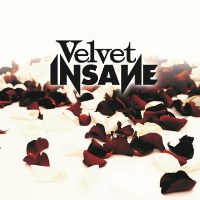 [Velvet Insane Velvet Insane Album Cover]